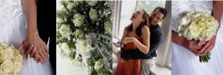 le bonheur des fleurs, decoration fleuriste, à perpignan 66
