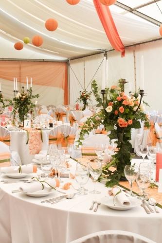 life shower sissi decoration fleuriste wedding planner dammarie les lys 77. Black Bedroom Furniture Sets. Home Design Ideas